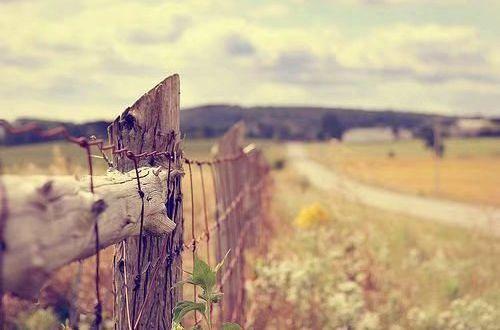 被爱情伤害的说说带配图 其实悲伤的时候谁都一样