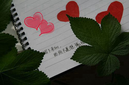 小红书经典情话集锦