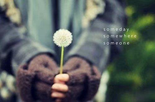 温柔到心里的句子